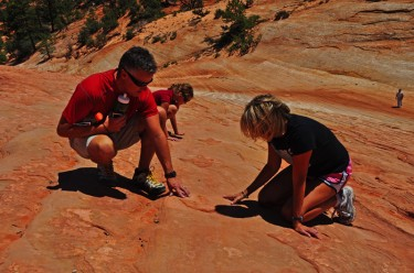 Dinosaur Tracks Tour Group, Family Tours, Educational Tours Kanab Utah Tours