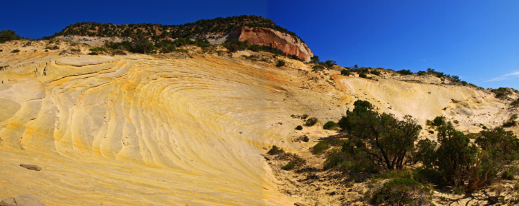 WHITE WAVE Photography Tour, Kanab Utah Tour