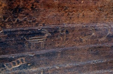 Wire Pass Petroglyphs, Anasazi Rock Art